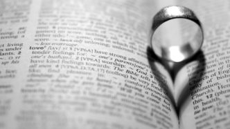 Love_Silver_Ring_in_the_book_097782_